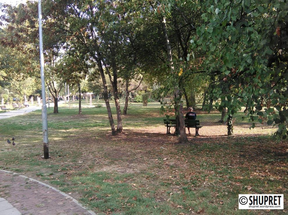 """Седящ на пейка човек в парка """"Заимов"""", до театър Сфумато"""